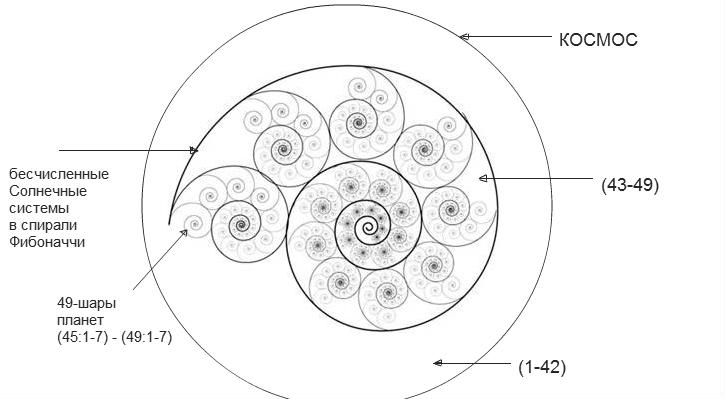 fibonacci sequence in reproduction